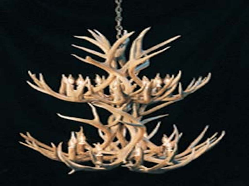 Two Tier Mule Deer Chandelier