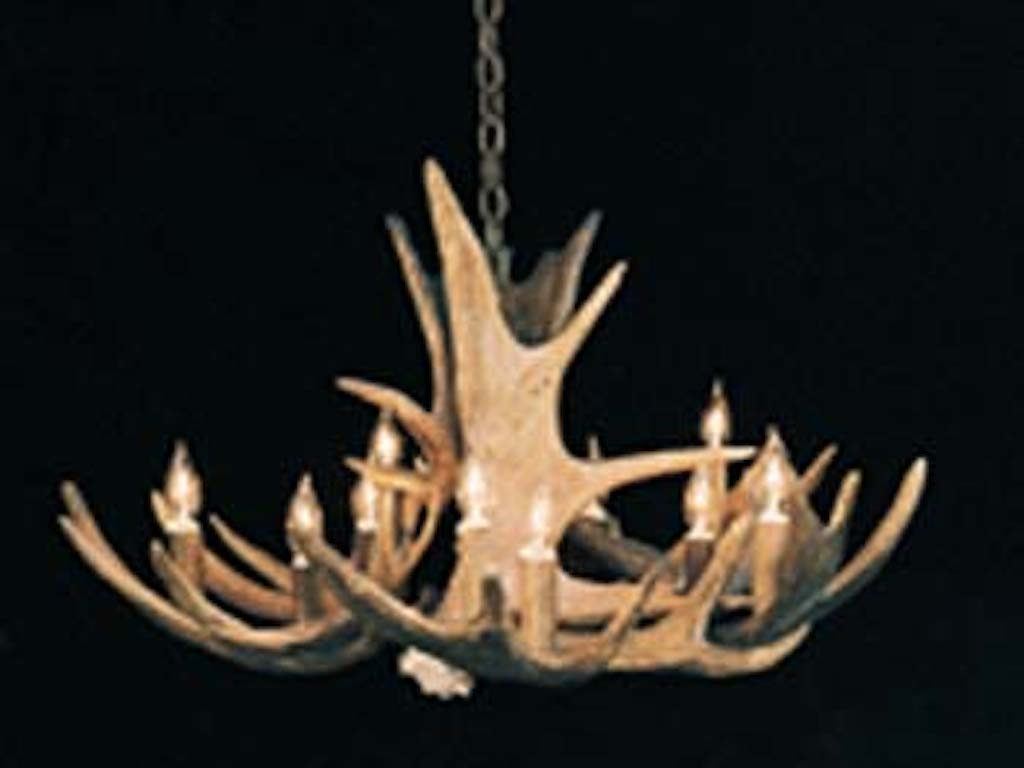 Small Moose Chandelier