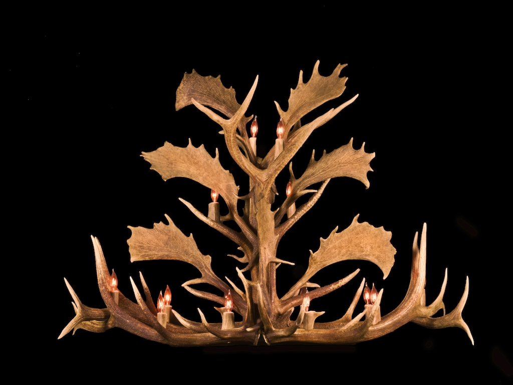 Long Fallow, Elk Chandelier