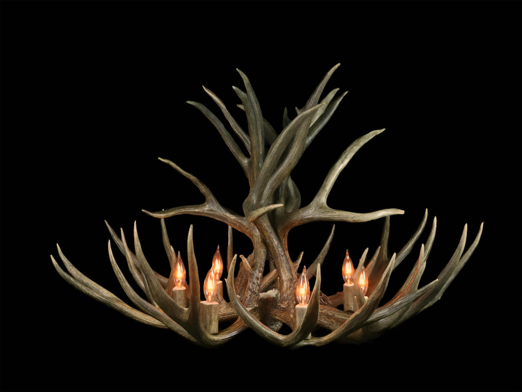 Large Standard Mule Deer Chandelier