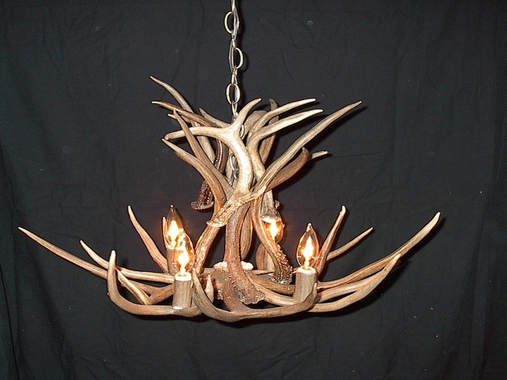 Small Mule Deer Chandelier